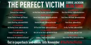 Perfect Victim_Blog Tour Banner_v1 (2)