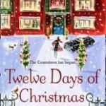 Twelve Days of Christmas by Trisha Ashley.