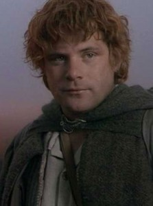 Sean Astin as Sam. The Lord of the Rings. Wingnut Films, The Saul Zaeutz company and New Line Cinema.
