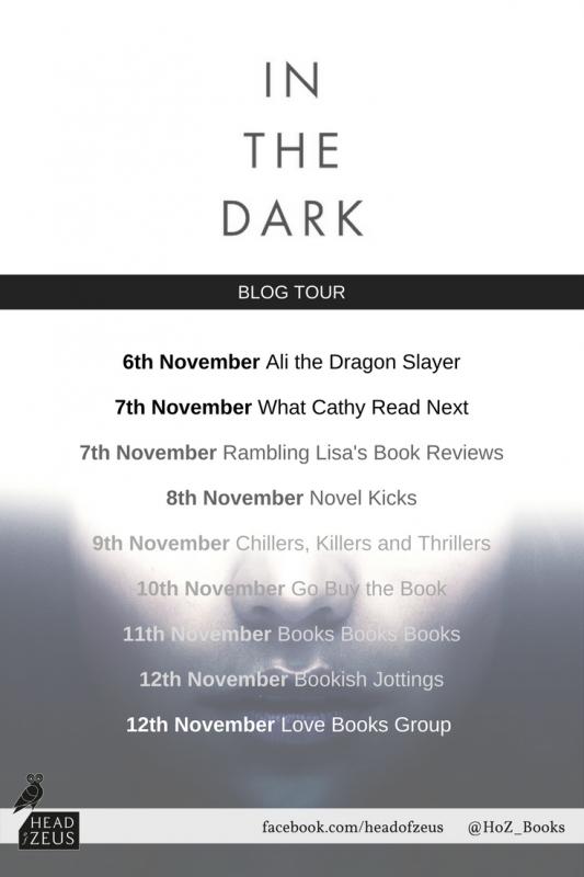 In the Dark blog tour banner