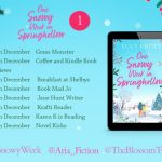 Book Extract: One Snowy Week in Springhollow by Lucy Knott